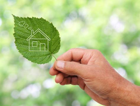 Clean House Concept